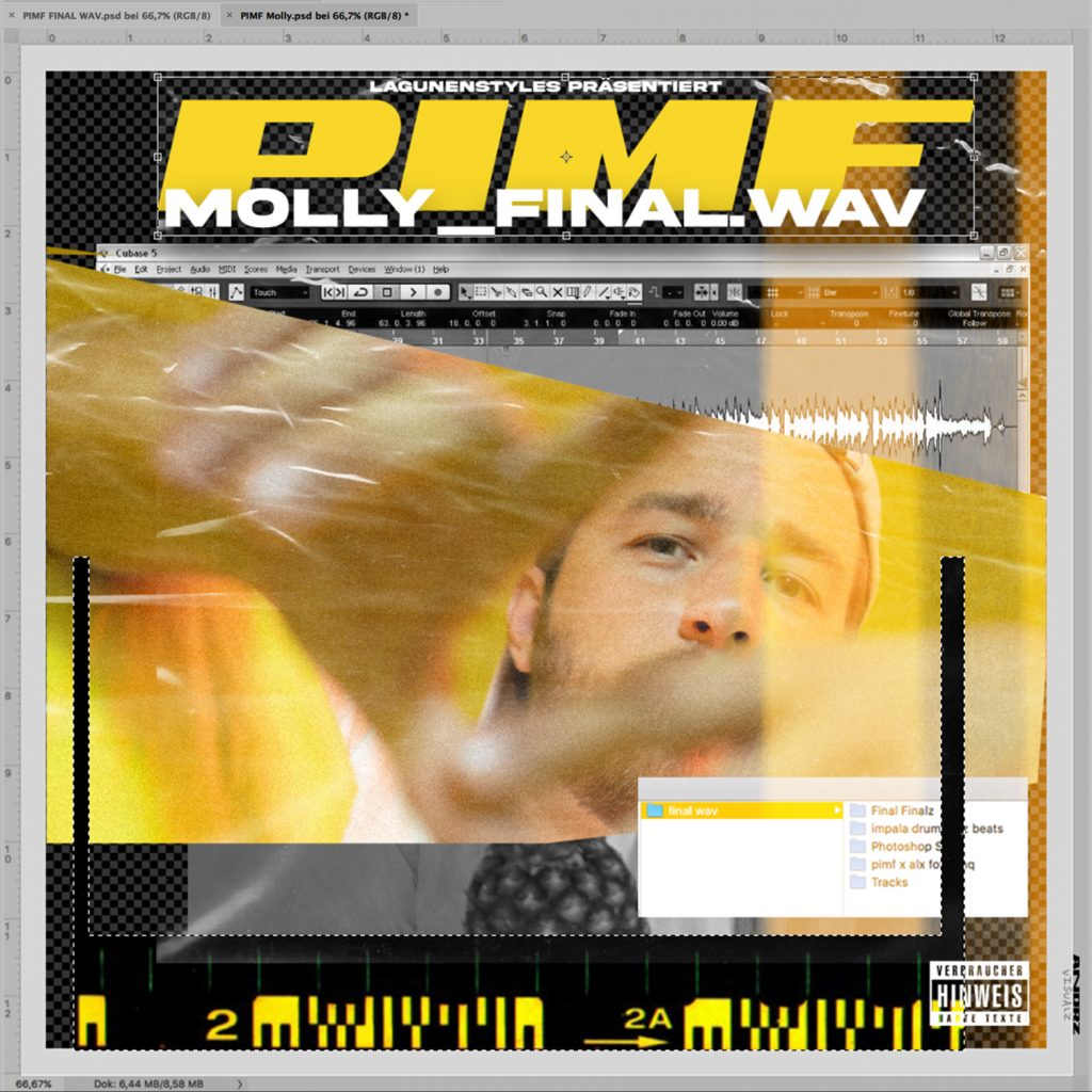 PIMF Molly final cover